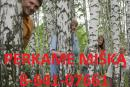 Perka mišką 8-641-07661
